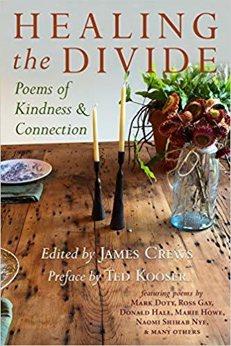 Image of the book cover Healing the Divide